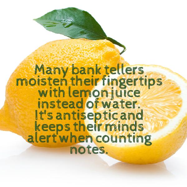 lemon wisdom