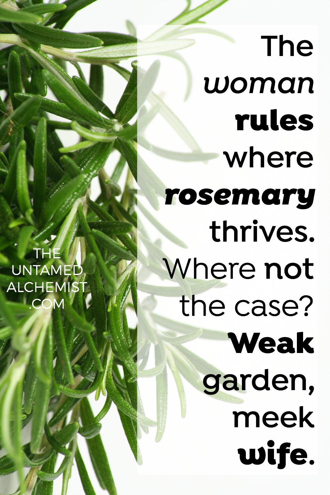 wisdom in brief rosemary.jpg