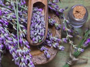 bigstock-lavender-spa-50301758