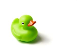 green rubber ducky