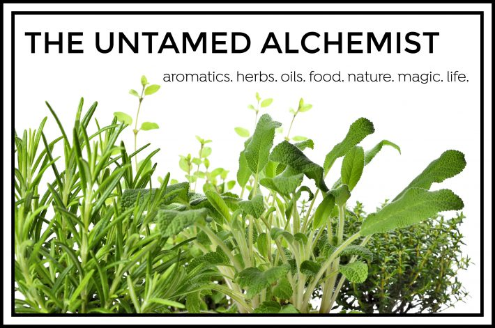 cropped-the-untamed-alchemist-header-1.jpg
